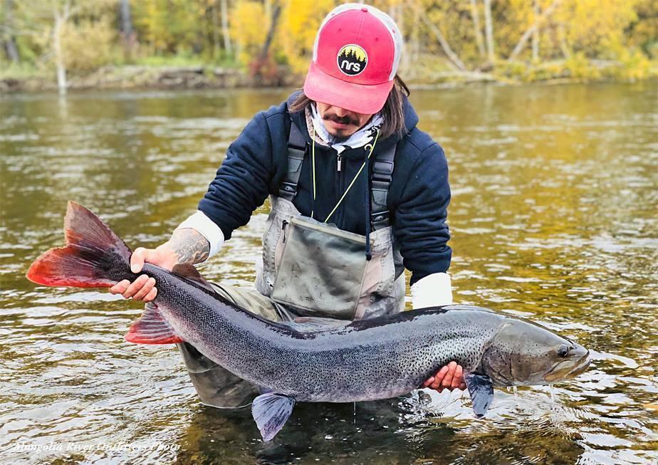 Ловля тайменя в сибири: описание рыбы, где ловить, выбор снастей и приманок