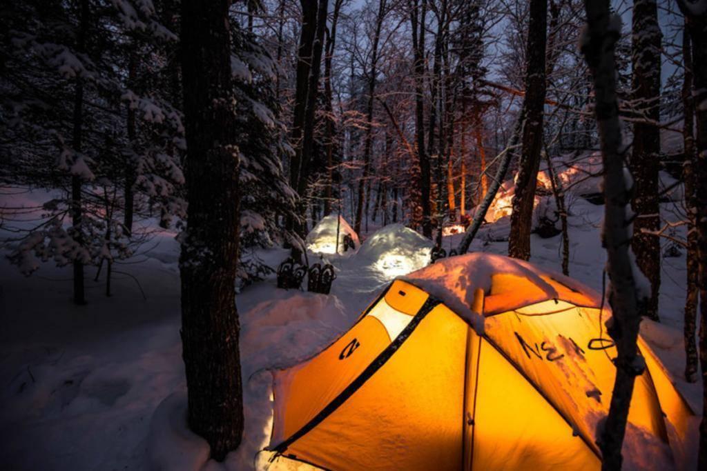 Как обгореть палатку в походе, рыбалке