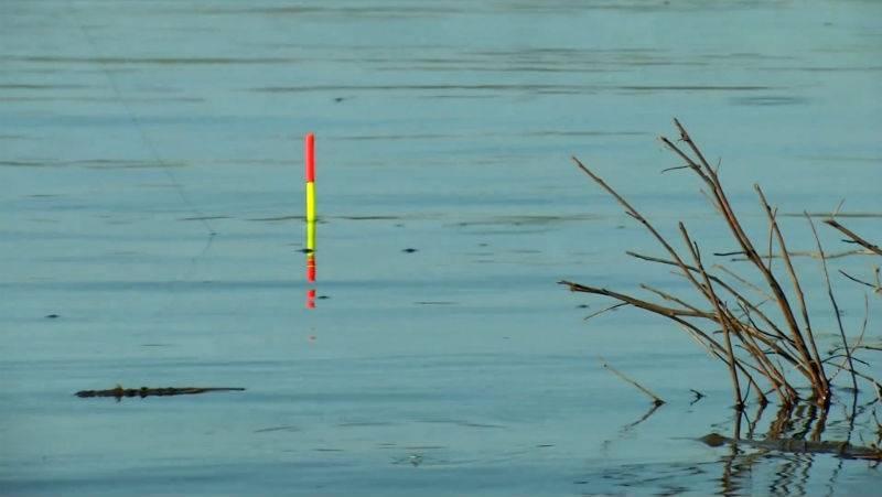 Ловля воблы в астрахани: ловля весной, в апреле, правила, снасти, видео, наживка где, когда, на что ловить?