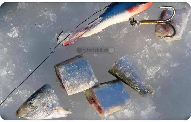Снасточка для ловли судака и щуки на тюльку и снулую рыбку