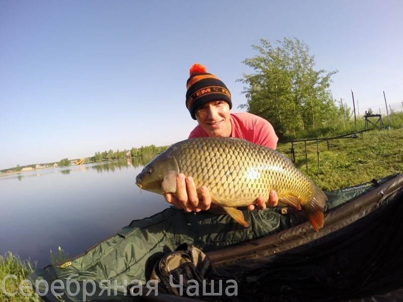 Платная рыбалка в алтайском крае: рыболовные туры, охотничьи базы, водоемы и озера алтайского края