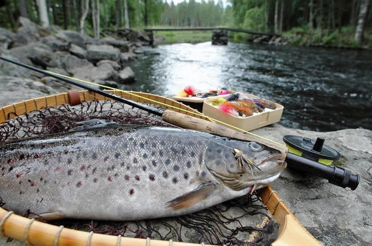 Рыбалка в Финляндии — лучшие места для ловли