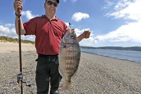 Рыбалка тонкий мыс в геленджике - стоимость, отзывы отдыхающих