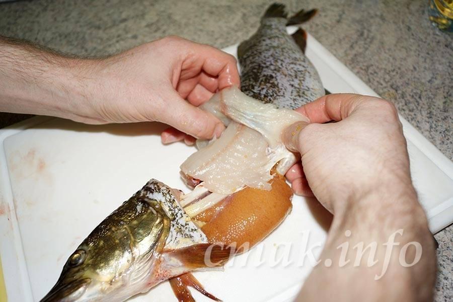 Рецепт фаршированной щуки: как снять со щуки кожу чулком, нафаршировать и приготовить