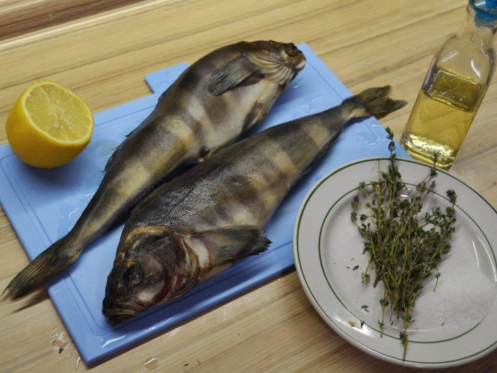Терпуг рыба. описание, особенности, образ жизни и среда обитания хищницы