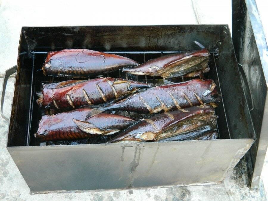 Копчение терпуга в домашних условиях: подготовка рыбы, холодный и горячий методы