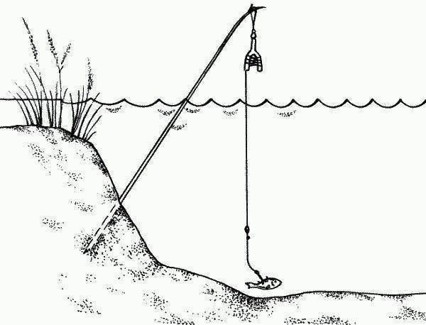 Жерлицы на щуку своими руками для ловли зимой и летом (видео и фото инструкции)