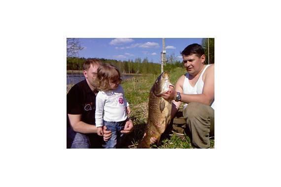 Рыбалка в дятлово клинского рыбхоза: какая рыба водится, цены и дополнительные услуги