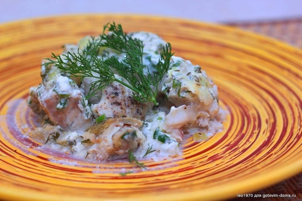 Куриные тефтели в сметанном соусе на сковороде - 8 пошаговых фото в рецепте