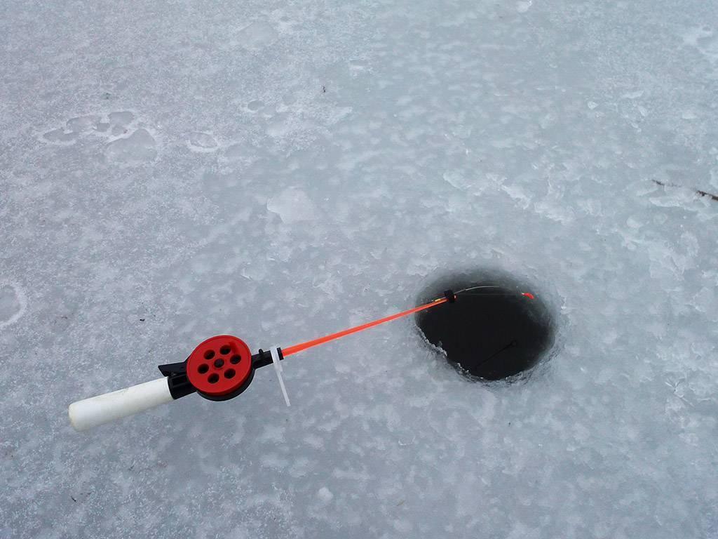 Как поймать больше рыбы зимой: 5 рекомендаций