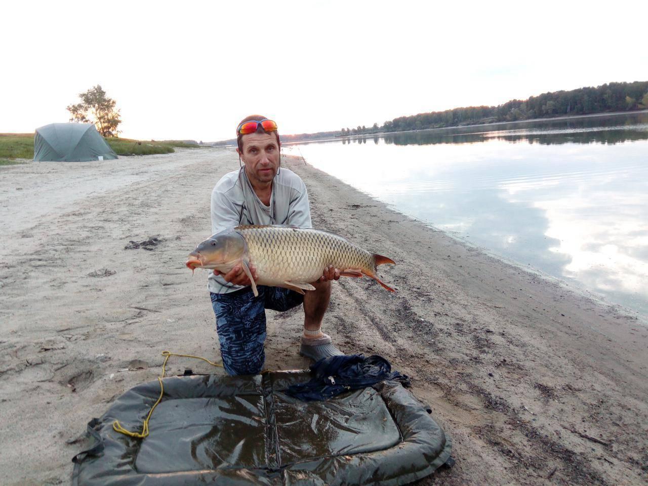 Платная рыбалка в камчатском крае: рыболовные туры, охотничьи базы и водоемы камчатки