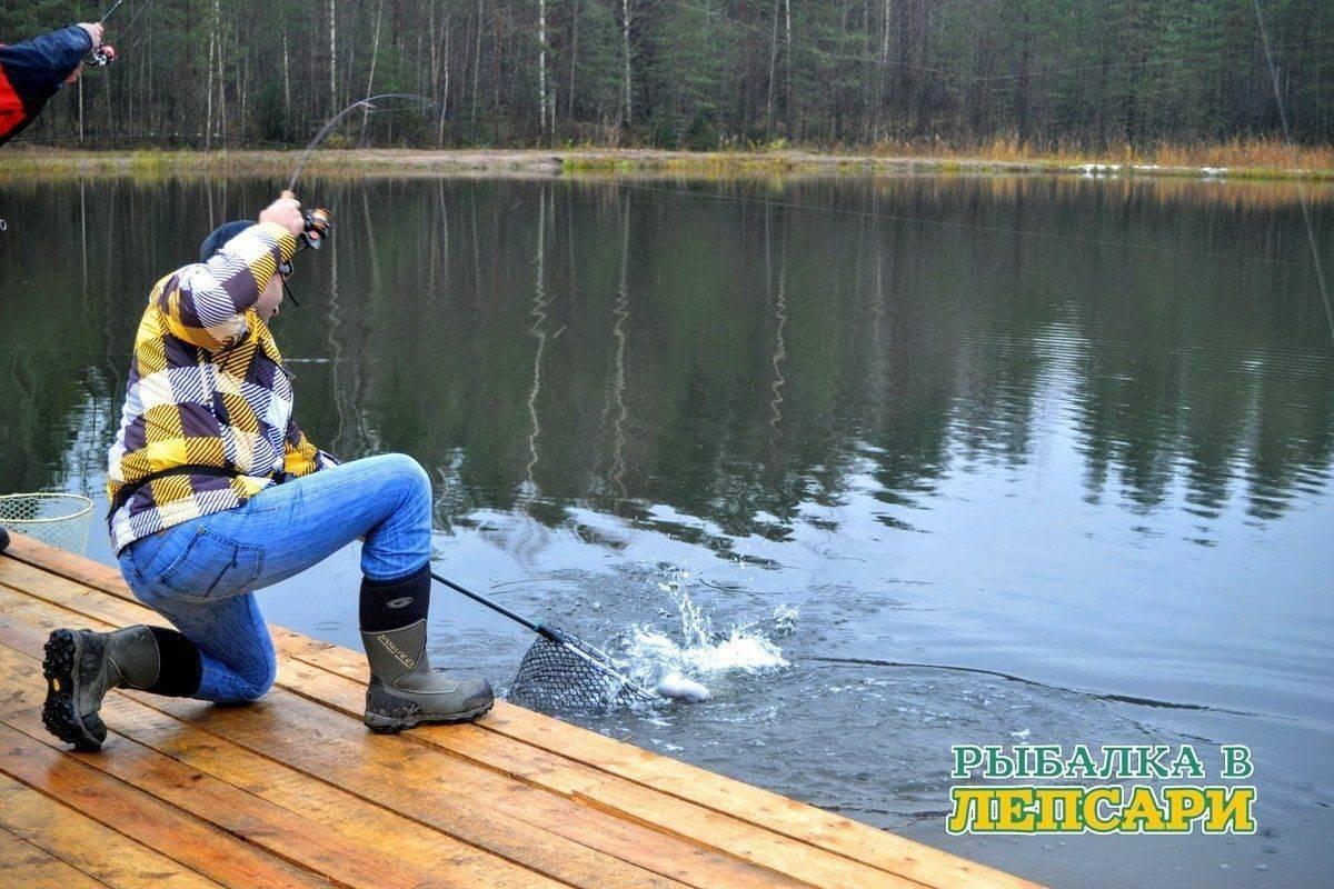 Рыбалка в спб - все виды рыбы реки и озера с картами глубин и подъездов отчеты о рыбалке и базы отдыха с фото