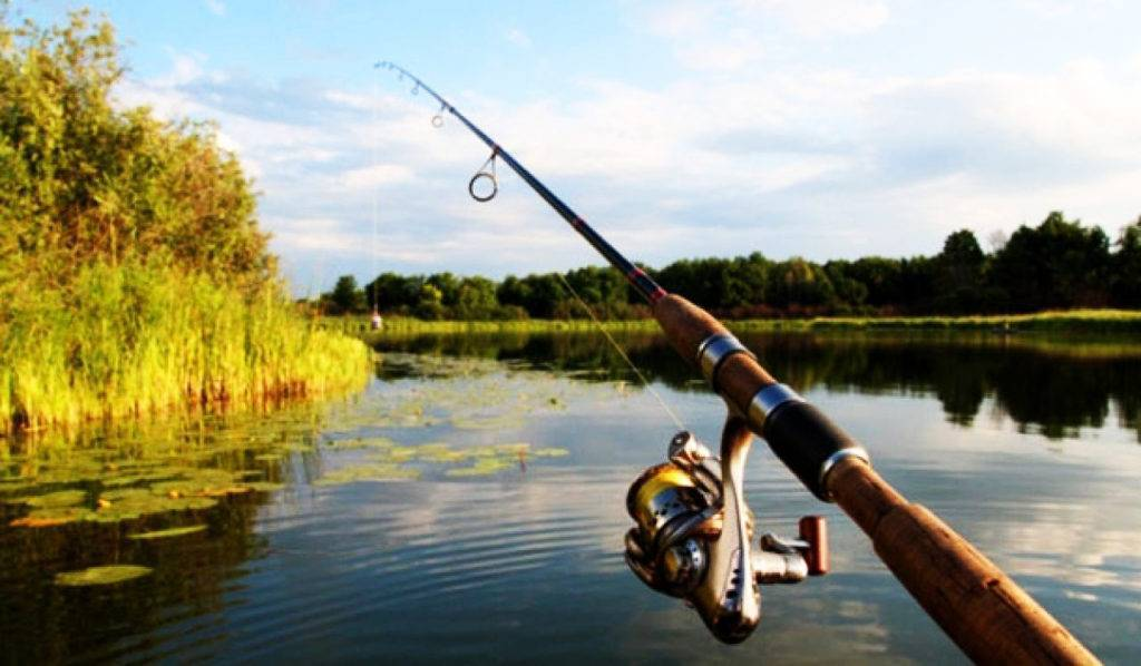 Выбор спиннинга для троллинга: особенности снастей для речной и морской рыбалки, правила выбора удилища