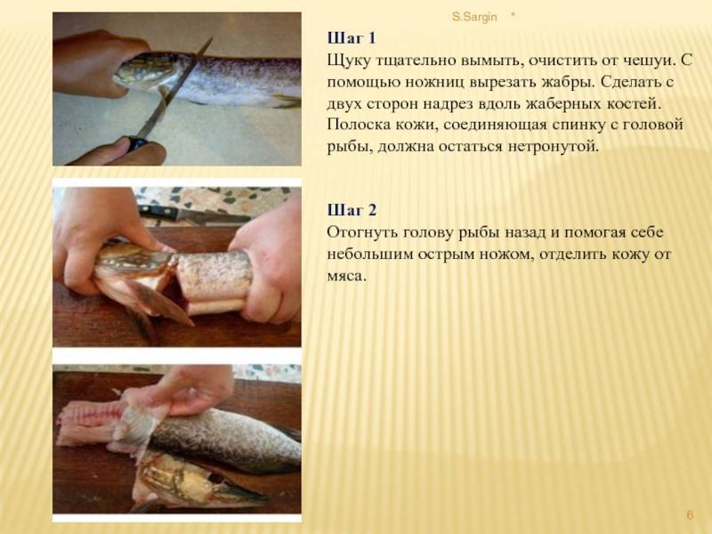 Как снять кожу с щуки — разделка на филе, метод снятия шкуры «чулком»