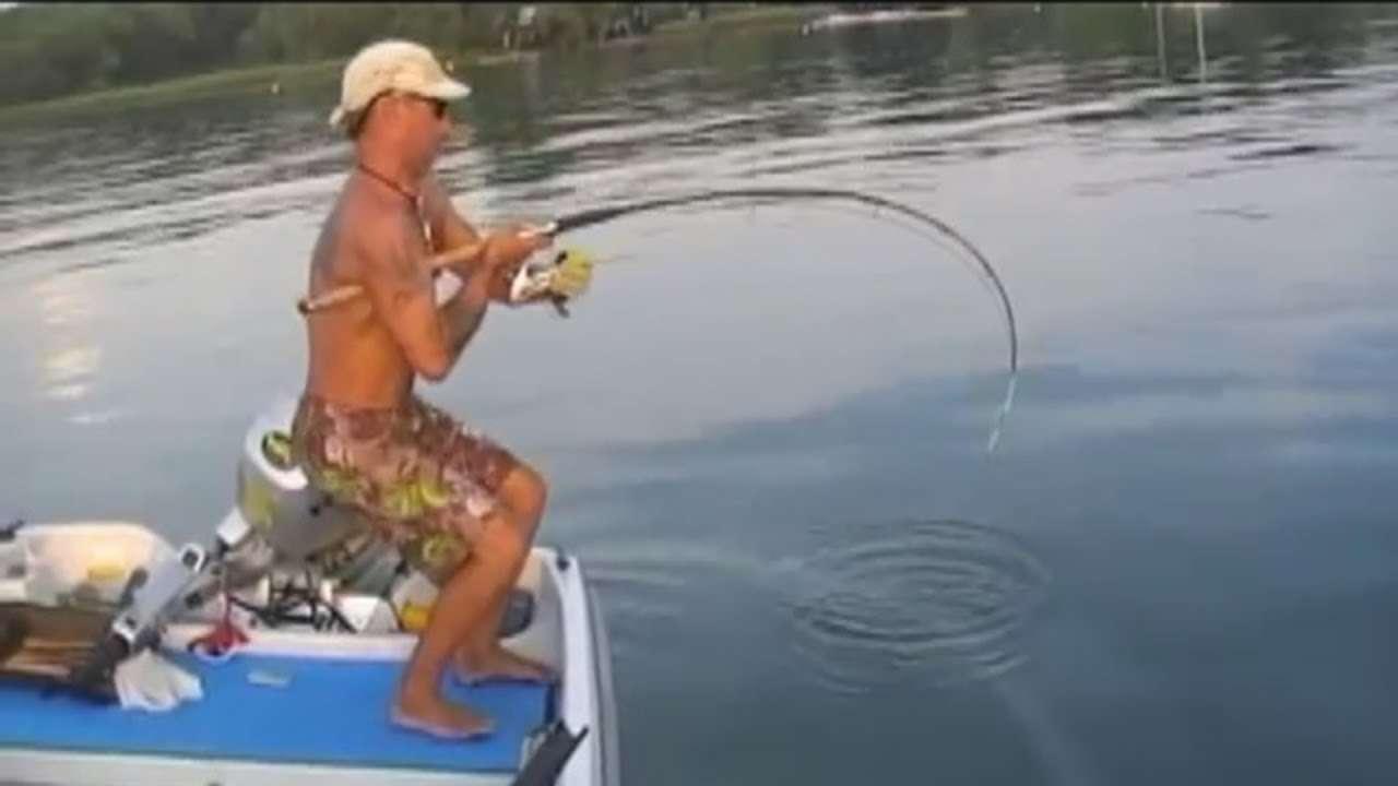 Ловля сома на спиннинг. как ловить сома? | видео