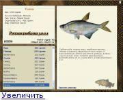 Рыба синец: фото и описание, где обитает, чем питается, особенности ловли