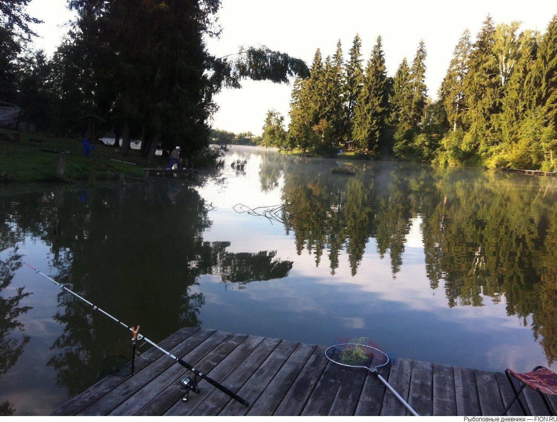 Река дубенка « все о рыбалке | охота | видео | статьи | техника ловли | календарь рыболова | виды рыб