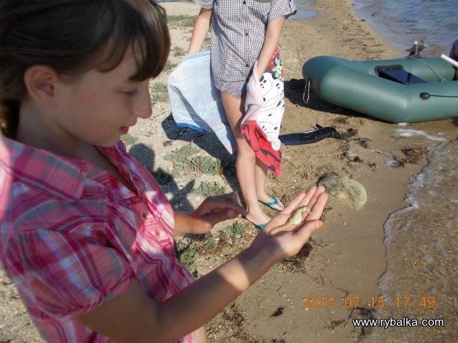 Морская рыбалка с берега в крыму