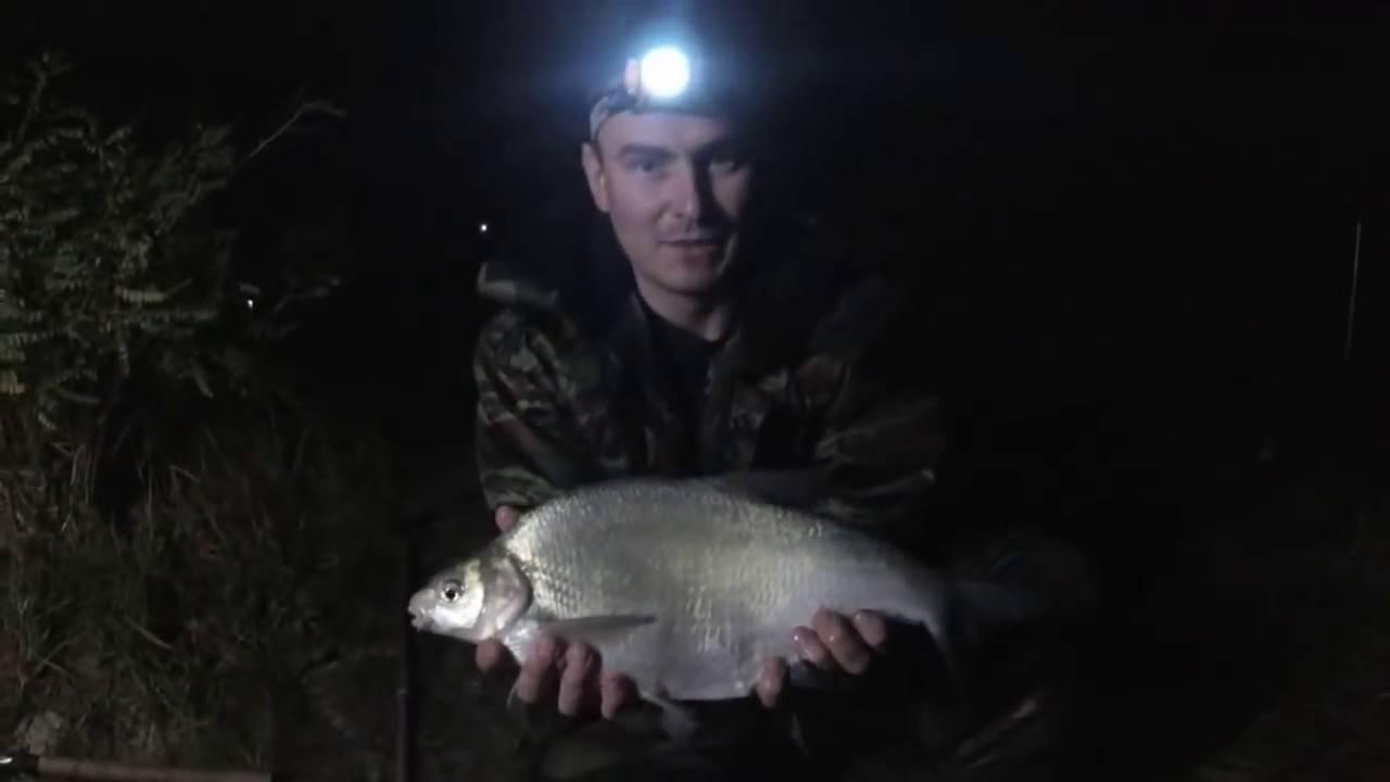 Ловля леща ночью: ночная рыбалка