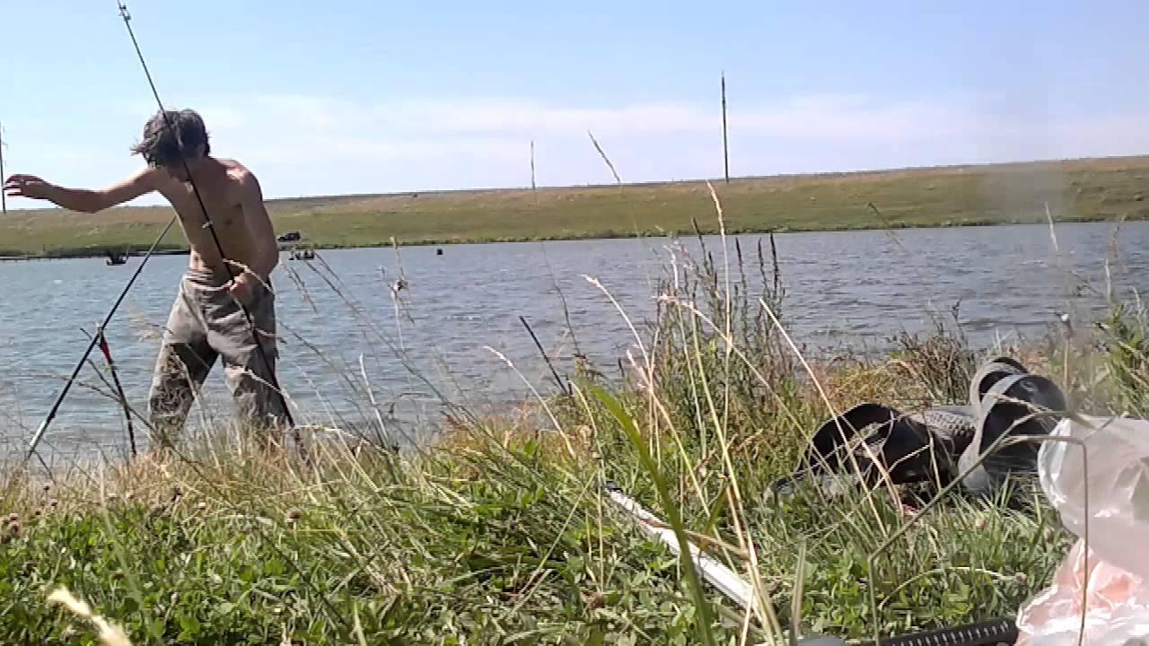 10 лучших платных прудов для рыбалки в самарской области — рейтинг 2020