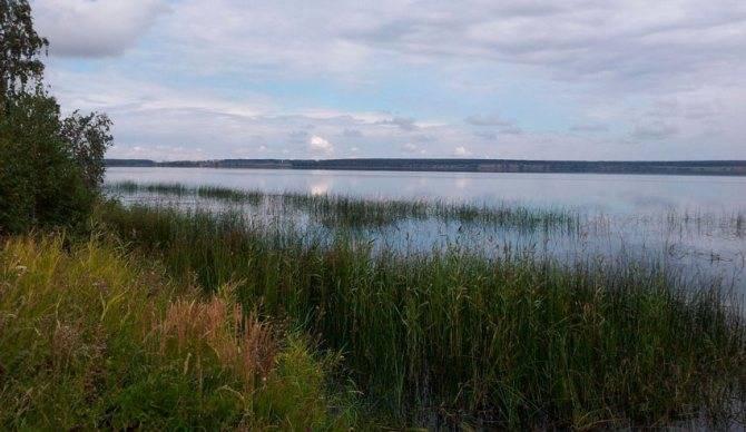 Озеро алабуга в челябинской области. рыбалка, карта, погода, отзывы, базы отдыха, фото, как проехать, отели