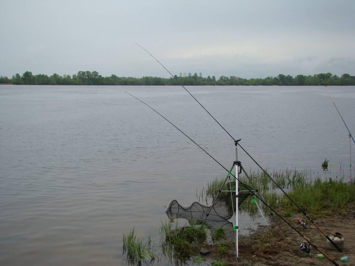 Пикерная снасть на карася: для интересной рыбалки и отличных уловов - читайте на сatcher.fish