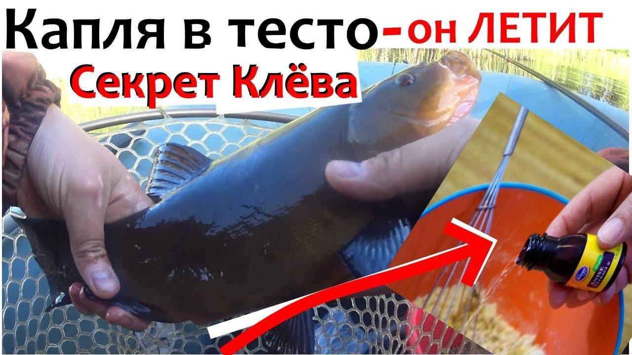 Применение активатора клева для удачной рыбалки