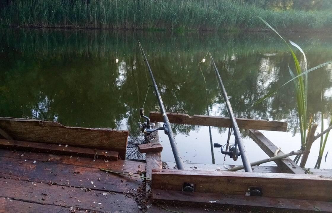 Как правильно рыбачить на донку: описание снастей и разновидности наживок, выбор мест и способов ловли