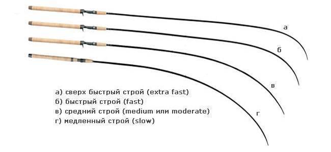 Спиннинг на щуку: тест, строй, длина, выбор бюджетной модели. топ 5 удилищ