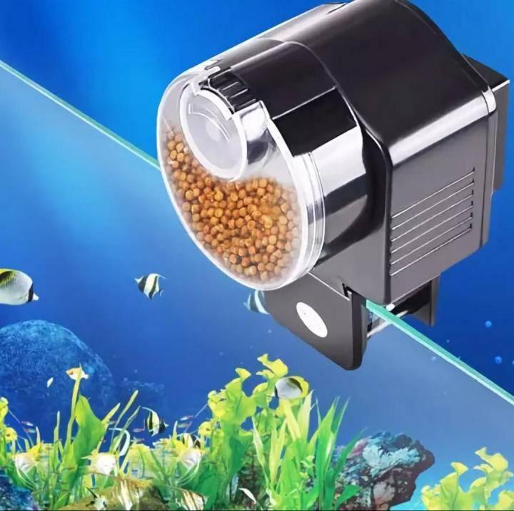 Кормушки для рыб в аквариуме: автокормушки (автоматическая подача), как сделать своими руками, виды, плюсы и минусы