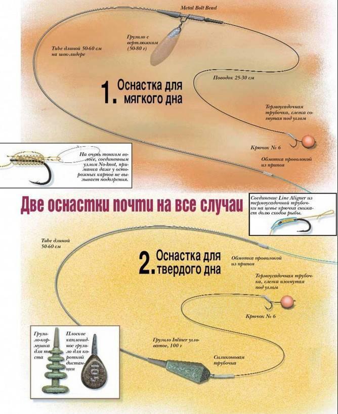 Ловля сазана на удочку: особенности поплавочной снасти