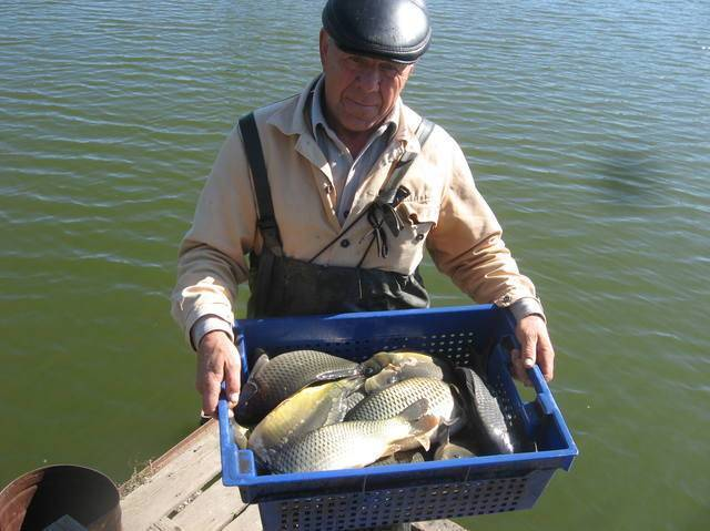 Бизнес план платной рыбалки (2020) — с чего начать и сколько можно заработать