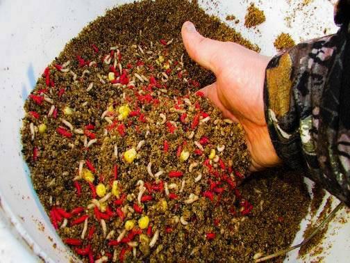 Как приготовить прикормку для плотвы своими руками?