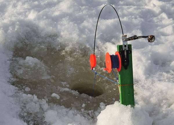Как ловить форель зимой? настраиваем снасти, подбираем приманки