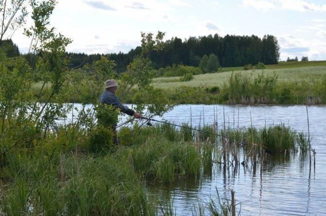 Рыбалка в пензенской области зимой и летом: правила рыболовства