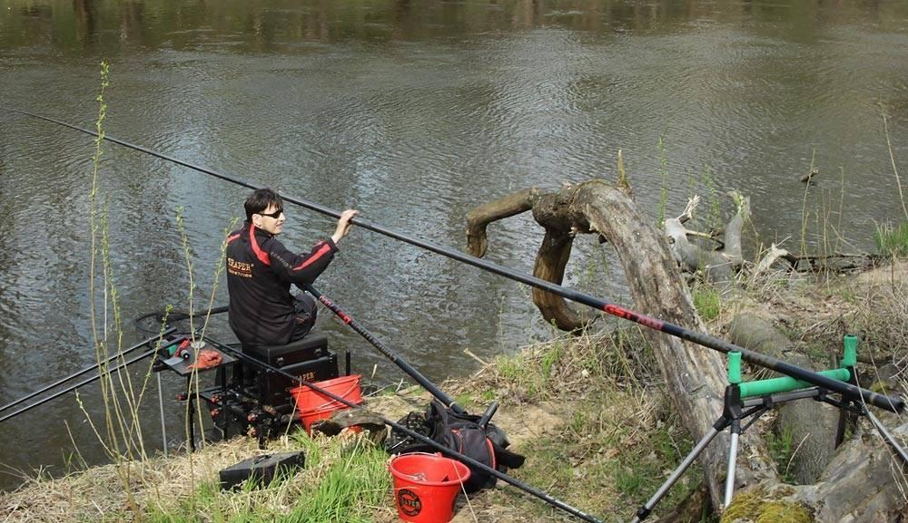 Ловля усача - снасти, методы поимки