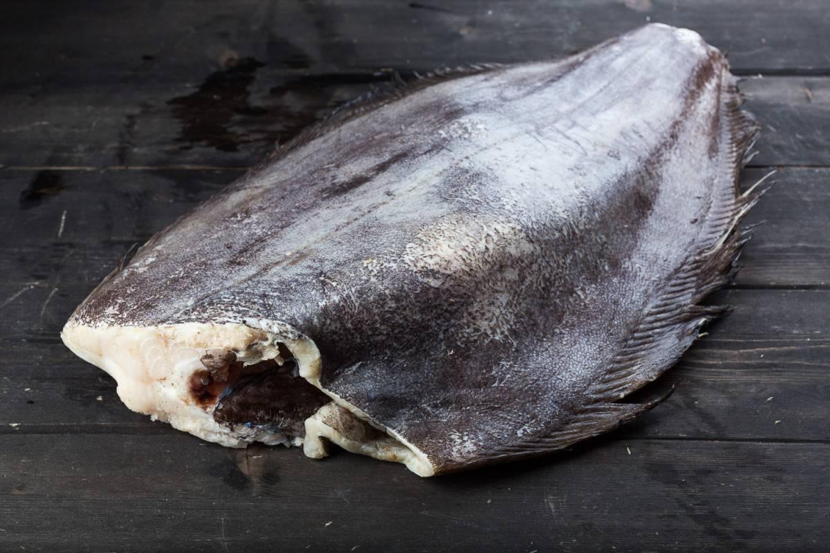 Палтус: польза и вред рыбы, калорийность, бжу на 100 граммов