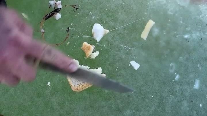 Сало – эффективная рыболовная насадка