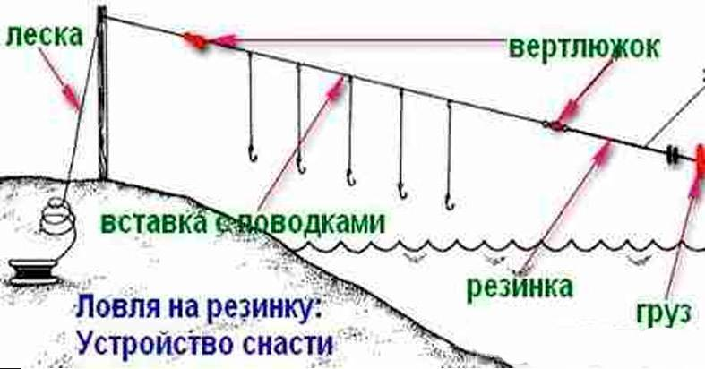 Подробно о рыбалке на резинку