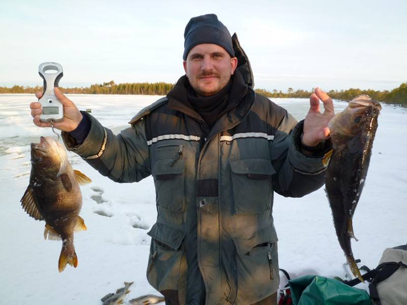 Река томь кемеровской области: особенности рыбалки, лучшие места для ловли