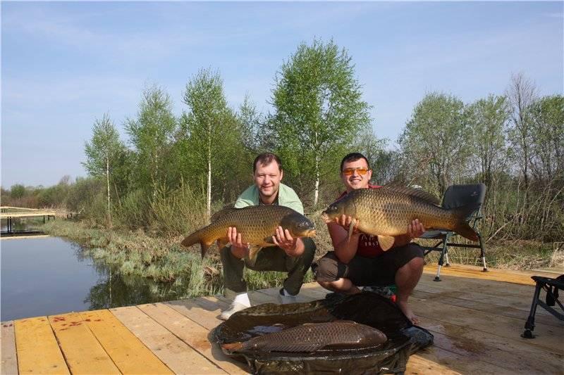 Места для рыбалки во владимирской области: реки, озера и «платники»