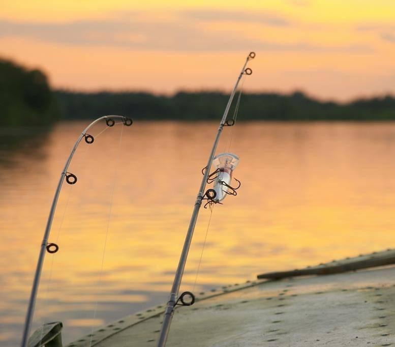 Ловля троллингом - что это за рыбалка? секреты, запреты, правила и техника на реке и озере