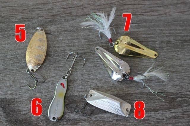 Ловля жереха на спиннинг: выбор приманки, снастей, как ловить с берега