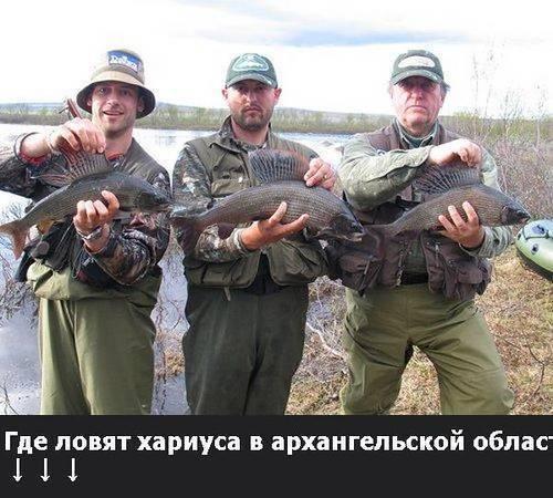 Рыбалка в архангельской области (29) | карта рыболовных мест