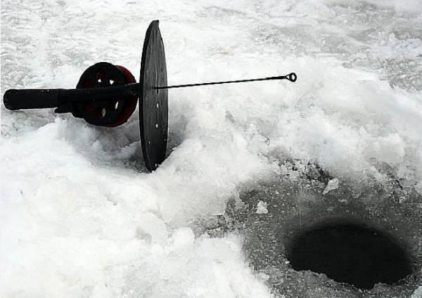 Как ловить форель зимой, подбираем приманки для форели зимой