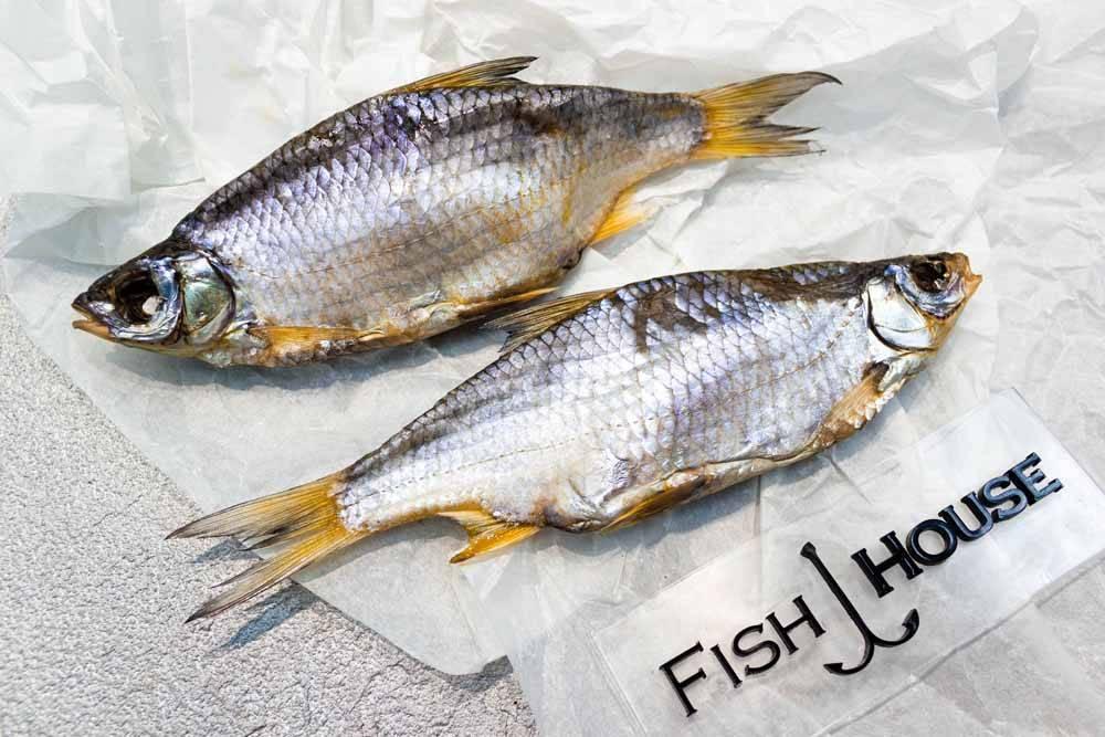 Тарань и вобла - разница между этими рыбами, в чем отличия