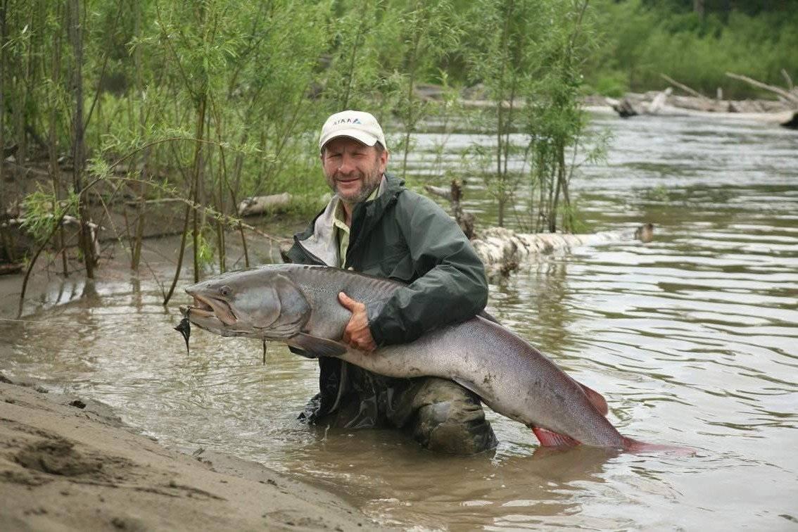 Отчет о рыбалке на лене в районе верхоленска (вторая половина августа 2010 года)