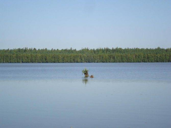 ✅ бабуринское озеро - fishingopt.su