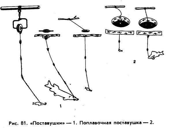 Зимняя ловля судака на поставушки: особенности и техника