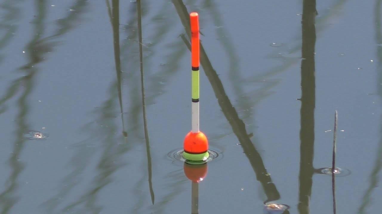 Ловля карася на поплавочную удочку: как правильно ловить